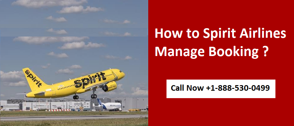 Spirit Airlines Manage Booking