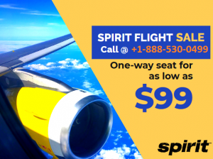 spirit airlines reservations deals
