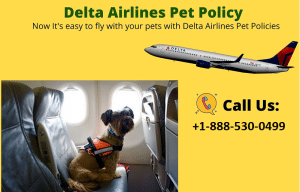 Delta-Airlines-Pet-Policy
