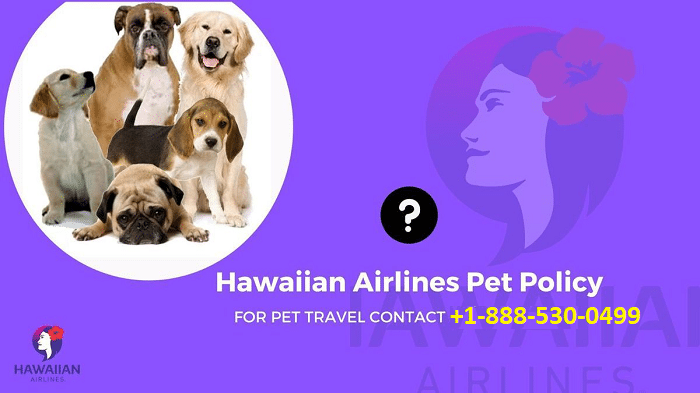 Hawaiian Airlines Pet Policy